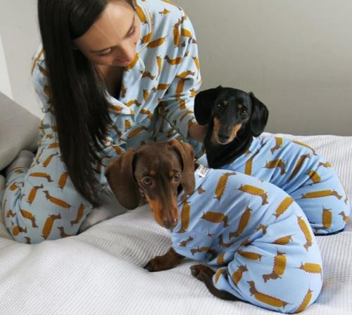 Pyjama trends - Matching doggy pjs